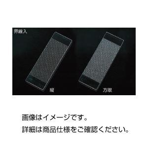 (まとめ)界線入スライドグラス方眼1.0mm目盛 1枚【×3セット】の詳細を見る