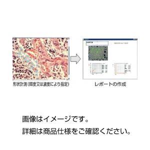 汎用画像処理・計測ソフトWinROOFの詳細を見る
