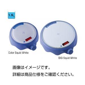 (まとめ)デジタルスターラーColorSquidWhite【×3セット】の詳細を見る
