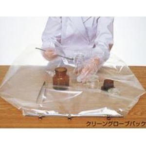 (まとめ)クリーングローブパック10枚組【×3セット】の詳細を見る