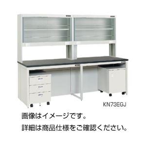 壁面実験台(ガラス戸試薬棚タイプ)KN73FGGの詳細を見る