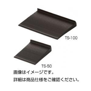 (まとめ)耐震用転倒防止板(たおれストッパー)TS-100 入数:2【×10セット】の詳細を見る