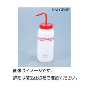 (まとめ)フッ素加工洗浄瓶500ml 2421-0500【×10セット】の詳細を見る