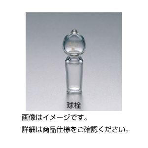 (まとめ)共通摺合球栓 24/40【×5セット】の詳細を見る