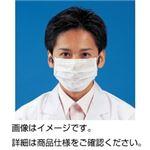 (まとめ)クラクリーンマスク FB(100枚入)【×20セット】