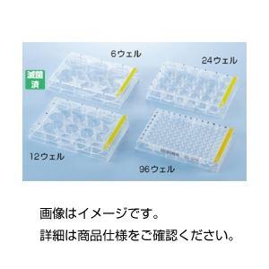 (まとめ)細胞培養プレート 92024 24ウェル 入数:126枚【×3セット】の詳細を見る