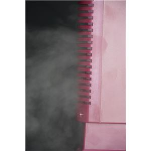 プラズマイオン空気清浄機レッド (エアイオンフレッシャー)