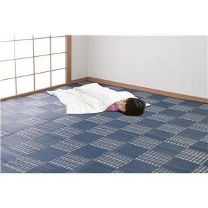 日本アトピー協会推薦カーペット ネイビー 本間4.5畳 (ウィード)
