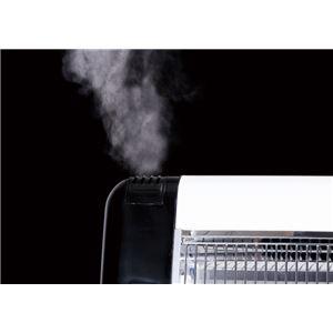 スチーム機能付き電気ストーブ/暖房器具 【レッ...の紹介画像2