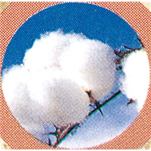 綿混合掛布団軽量敷布団セットブルー系 国産和仕立て