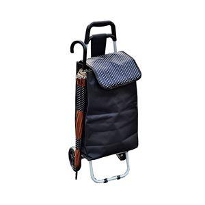 保冷・保温ショッピングカート/キャリーカート 【内面:保冷バッグ仕様】 軽量 傘立て用フォルダー付き