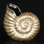 インテリアオーナメント/室内置物 【巻貝型】 長さ33cm×幅23cm×高さ31.5cm 陶器製 『貝殻 シェルベースA』 〔什器〕