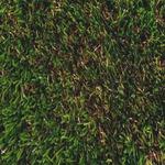 人工芝 モンテカルロ 1mX10mXH3.2cm FIFA/UEFA/FIH/ITF 連盟公認 〔ガーデニング用品/園芸〕