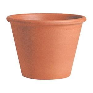 【6個入】イタリア製テラコッタ鉢(植木鉢/プランター) バッサム φ25cm 〔ガーデニング用品/園芸〕