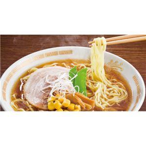 藤原製麺株式会社 北海道繁盛店対決ラーメン 12食 HT-30