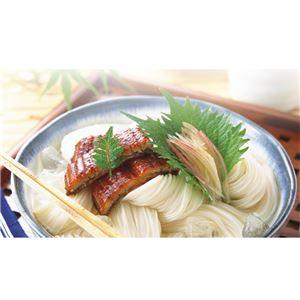 野村屋 島原手延素麺 絹の輝「二年物」 K-50
