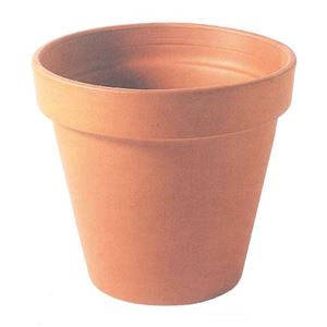 【24個入】イタリア製テラコッタ鉢(植木鉢/プランター) スタンダードポット φ11cm 〔ガーデニング用品/園芸〕