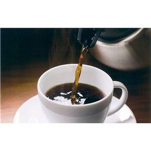 コーヒーメーカー/コーヒーマシン 【2段階濃度調節】 自動ミル洗浄 ミル丸洗い