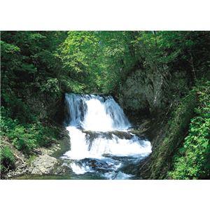 北アルプス5年保存水 500ml