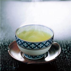 【ZOJIRUSHI】 マイコン沸とう電動給湯ポット/湯沸かしポット 【5L】 大容量 省エネ設計 給水お知らせブザー