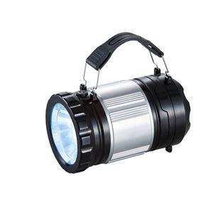 ラウンド型ランタンライト/照明器具 【30個 LEDライト付】 持ち手:2か所付け替え可 〔アウトドア キャンプ バーベキュー 災害時〕