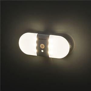 LED人感センサーランプ 6360