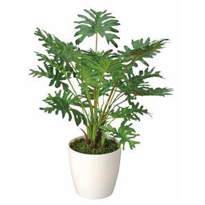 光の楽園【光触媒/人工観葉植物】42cm スプリット