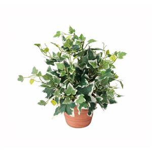 光の楽園【光触媒/人工観葉植物】ホーランドアイビー 25cm
