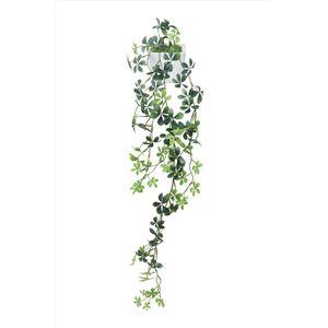 観葉植物/フェイクグリーン【壁掛けシュガーバイン】日本製光触媒消臭抗菌ホルムアルデヒド対策『光の楽園』