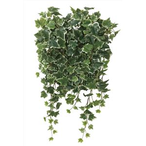 光の楽園【光触媒/人工観葉植物】壁面緑化斑入アイビー