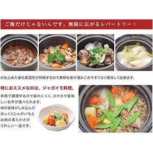 時短釜/炊飯鍋 【ルビー】 高耐熱セラッミック製 電子レンジ対応 『廣田』