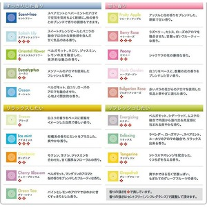 マジックボール専用ソリューション/空気洗浄専用液 【300ml/グリーンティ】