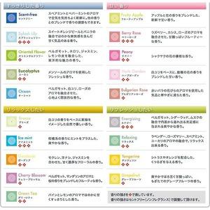 マジックボール専用ソリューション/空気洗浄専用液 【300ml/ハーブガーデン】