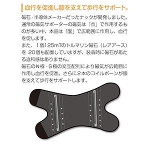 磁気膝サポーター/磁気治療器 【ベージュ Lサイズ】 着脱簡単 手洗い可 『ペガサス PEGASUS』
