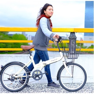 折りたたみ自転車20インチ/アイボリーシマノ6段変速【Raychell】レイチェルFB-206R