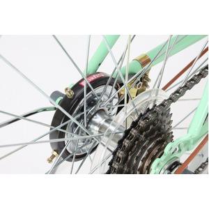 折りたたみ自転車 26インチ/グリーン(緑)×ブラウン 低床型 【Raychell】 レイチェル R-321N
