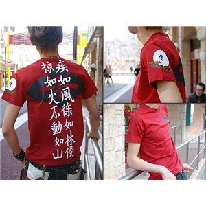 武田信玄(第2弾)Tシャツ LW XL えんじ