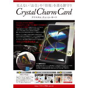 真田幸村 スキミング防止カード
