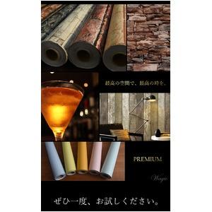 プレミアムウォールデコシート/DIY壁紙シール 【30m巻】 C-WA213 カラー ブラック