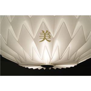 シーリングライト(照明器具) 北欧風 厚み約17cm 円形 〔リビング照明/ダイニング照明〕【電球付き】
