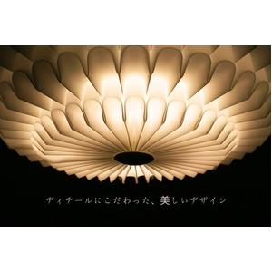 シーリングライト(照明器具) LEDタイプ/5000ルーメン 自然光色 花モチーフ ヨーロッパ調 〔リビング照明/ダイニング照明〕【電球付き】