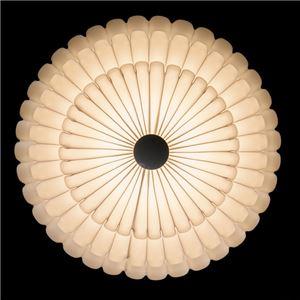 シーリングライト(照明器具)  リモコン付き 調光調温 リモコン三段調節  LEDタイプ/4000ルーメン 自然光色 花モチーフ ヨーロッパ調 〔リビング照明/ダイニング照明〕【電球付き】