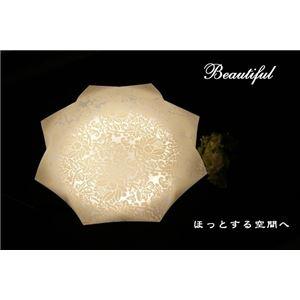シーリングライト(照明器具) リモコン付き 調光調温 リモコン三段調節 LEDタイプ/自然光色 花柄/八角形 〔リビング照明/ダイニング照明〕