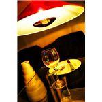 ペンダントライト(吊り下げ型照明器具) 円錐型 アルミ製 レッド(赤) 〔リビング照明/ダイニング照明〕