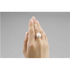 大粒貝パール指輪 2本組 13号 f04