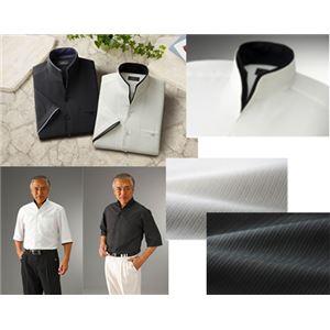 二重変化衿5分袖シャツ2枚組 Lサイズ h01