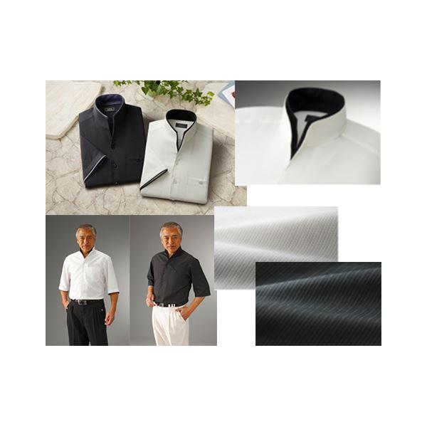 二重変化衿5分袖シャツ2枚組 Lサイズf00