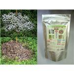 粉末除草剤 ウィードブライト 1kg
