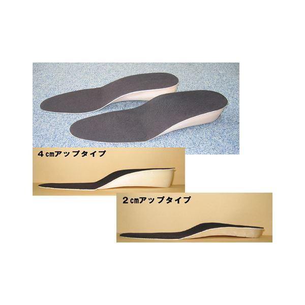 美脚・足長インソール 2足組(2cm、4cmアップ) 2cmアップ(Lサイズ)f00