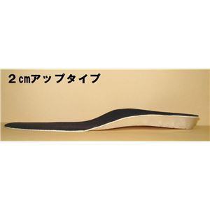 美脚・足長インソール 2足組(2cm、4cmアップ) 2cmアップ(Lサイズ) f04